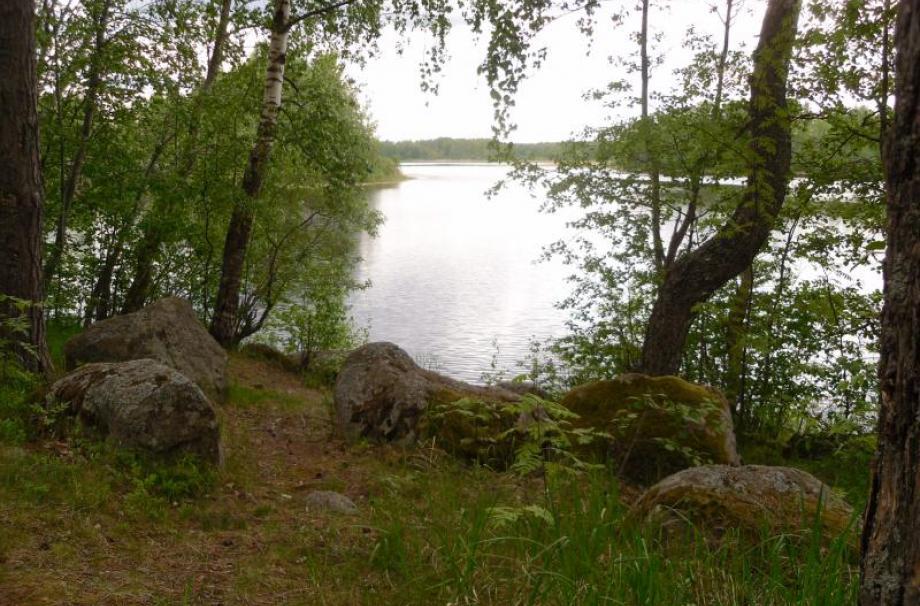 Прохладное озеро