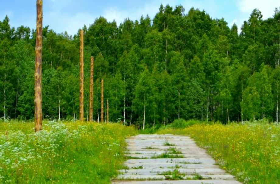 Финские холмы