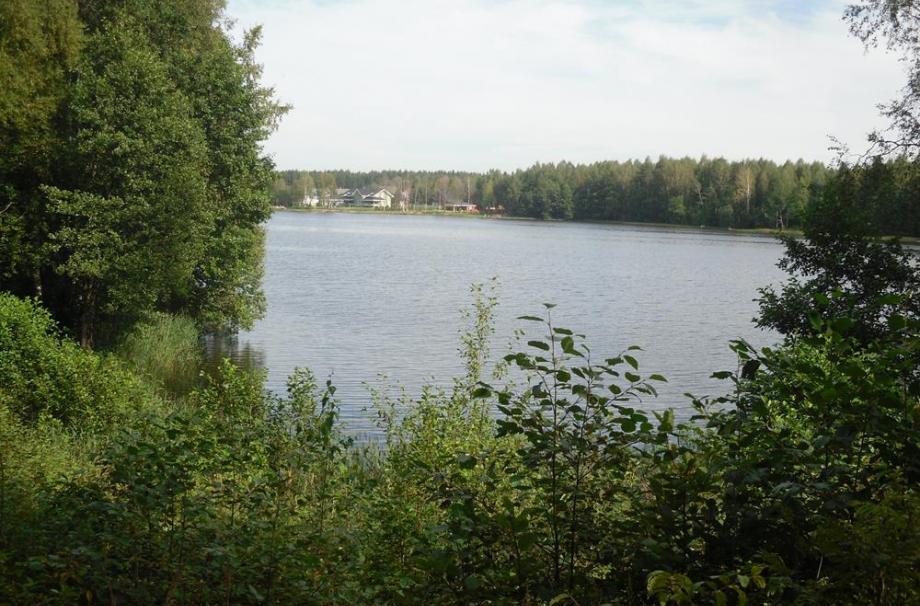 Борисовский берег
