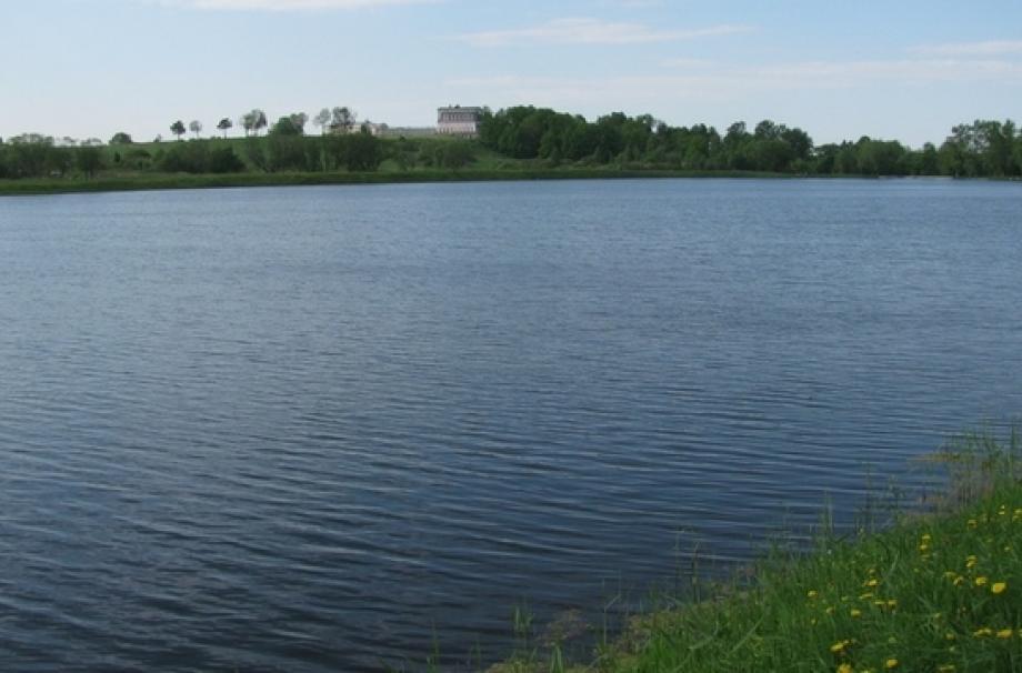 Поселок у д. Владимировка
