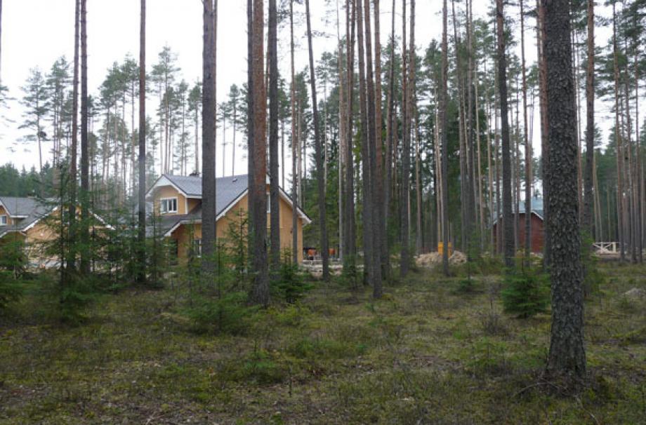 Raivola house