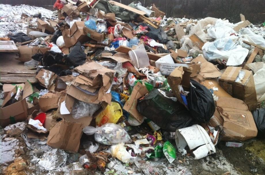 экология в ленинградской области