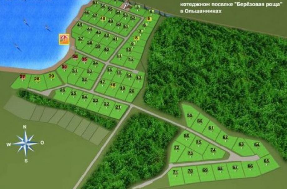 Коттеджный поселок Березовая Роща