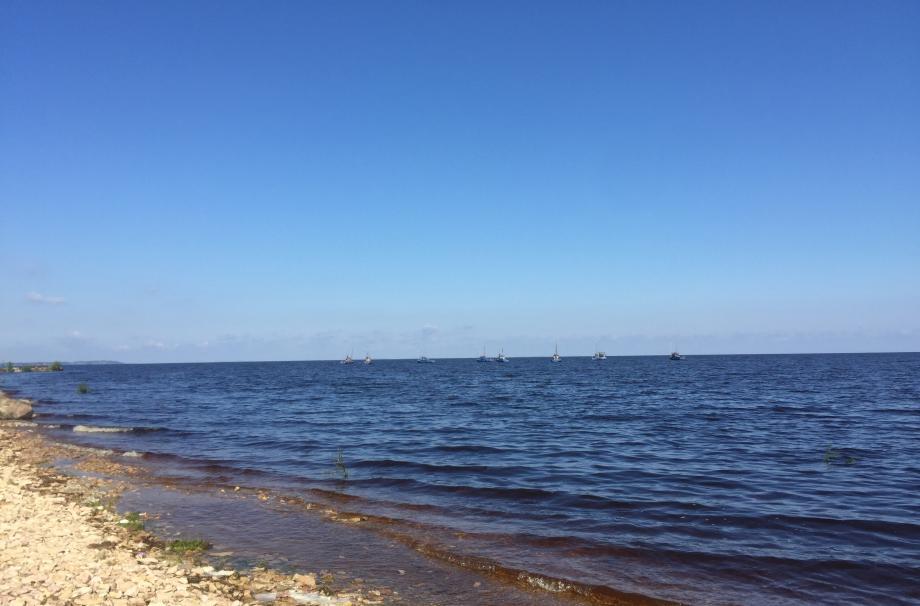 Курорт Ильмери новгородская область берег озера