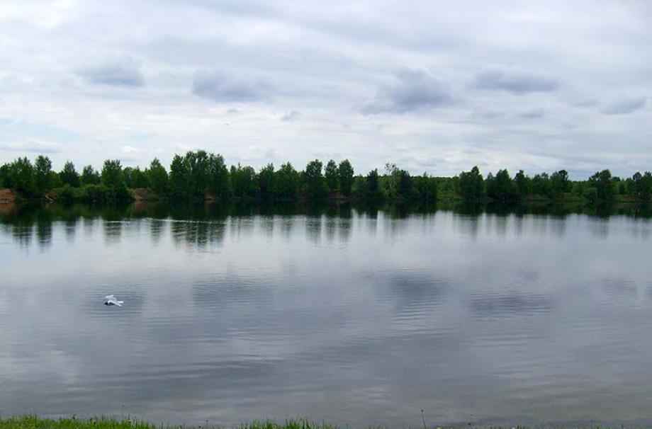 Жилой квартал Шинкарский пруд