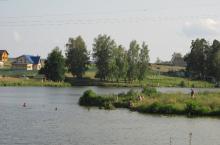 Сосновый берег