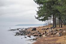 """Клубный поселок """"Litorino"""" - 300 м. до береговой линии Финского залива"""