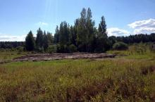 Земельный участок в КП Услада