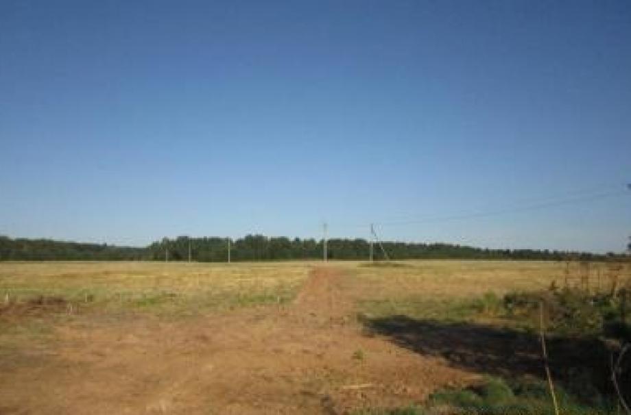 Игнатьевский парк