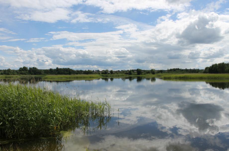 Коттеджный поселок Ропшинские пруды