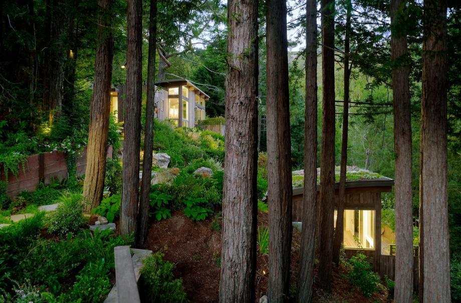 Домик с крышей-садом от архитектора Feldman Architecture