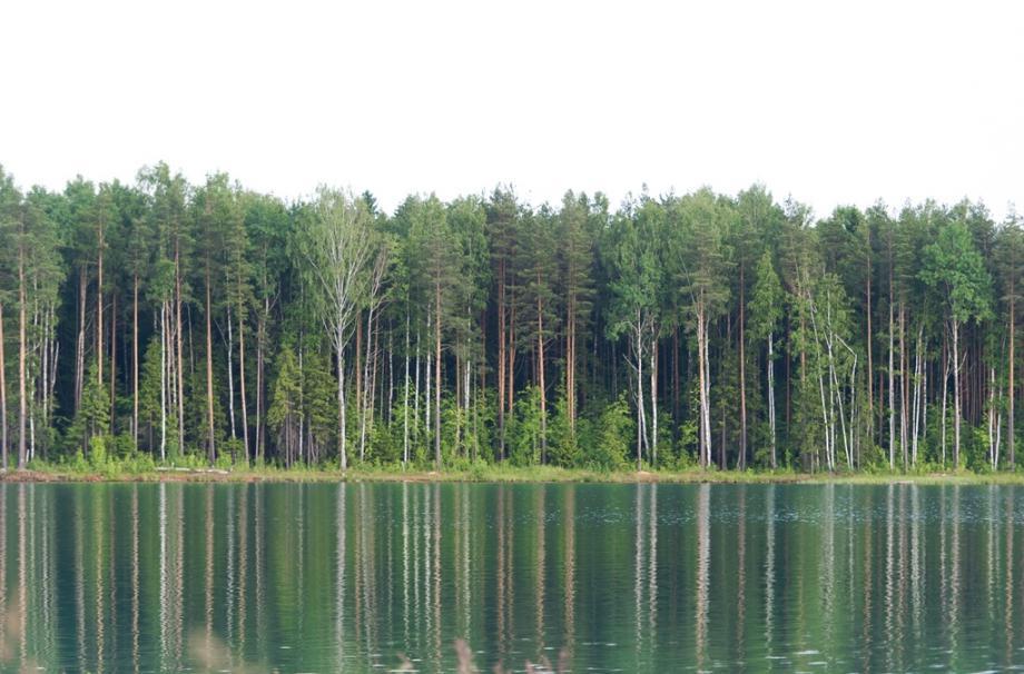 манушкино лазурное озеро пляж купание