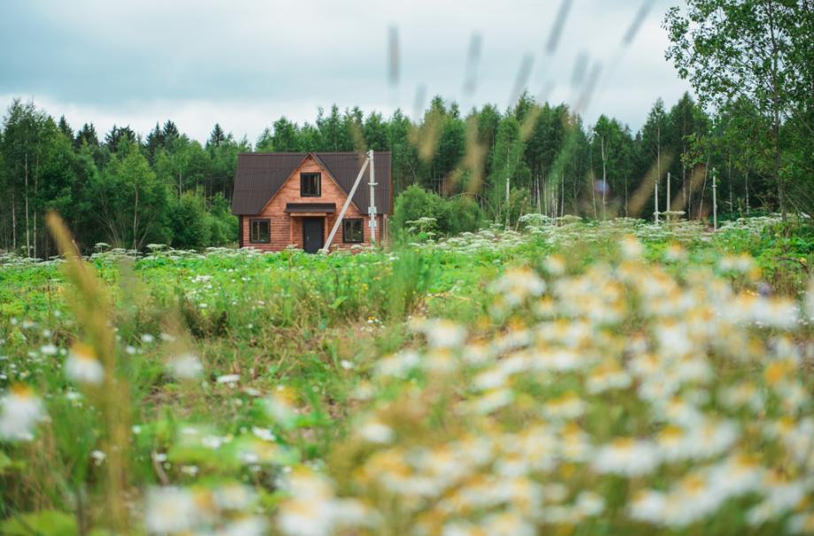 коттедж загородный дом коттеджный поселок дача у озера
