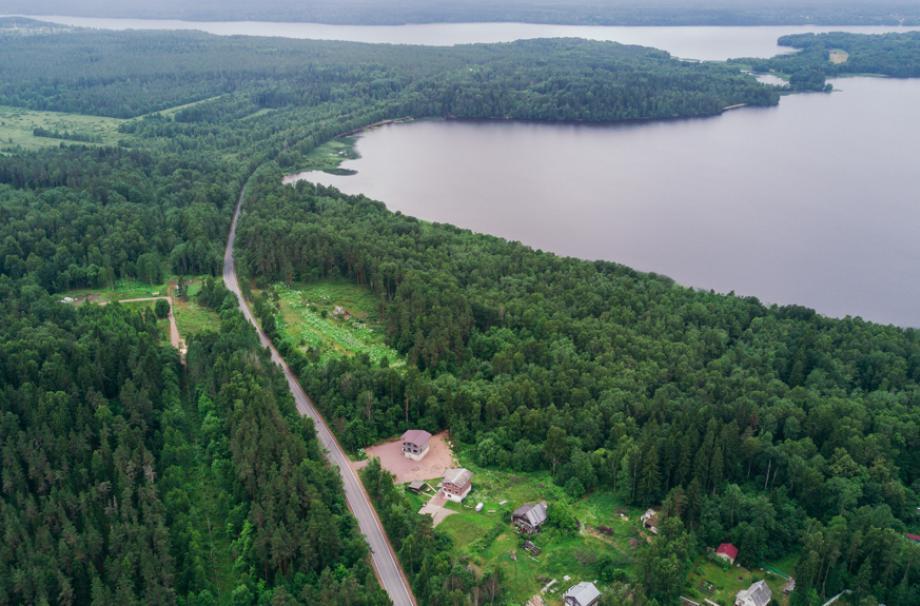 мамонтовское александровское озеро водоёмы поселок у воды