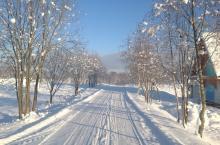 Корела Парк