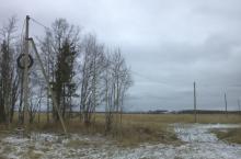 Земляничная поляна