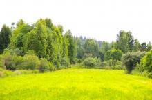 Репао Парк