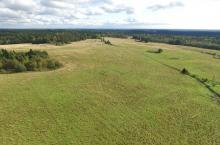 На фото - новый земельный участок в Выборгском районе