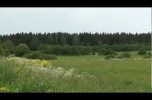 Embedded thumbnail for Коттеджный поселок «Усадьба Озертицы»
